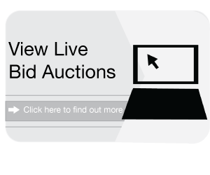 Car Auctions | Newark Motor Auctions In Nottingham